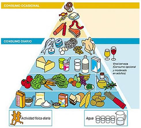 Actualización en nutrición y dietética