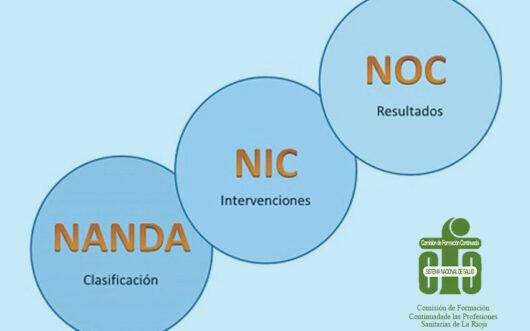Estandarización-y-Normalización-de-la-Practica-Enfermera-bajo-la-Taxonomía-Nanda-Nic-Noc