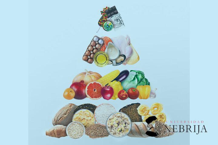Actualizacion-nutricion-dietetica